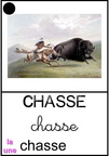 Chasse - indiens
