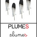 Plumes - animaux||<img src=_data/i/upload/2011/10/14/20111014180755-aacb29b0-th.jpg>