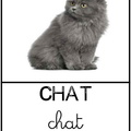 Chat - animaux||<img src=_data/i/upload/2011/11/07/20111107220417-f526ca97-th.jpg>